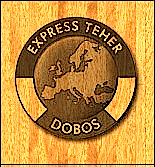 Express-Teher_Logo_13.png
